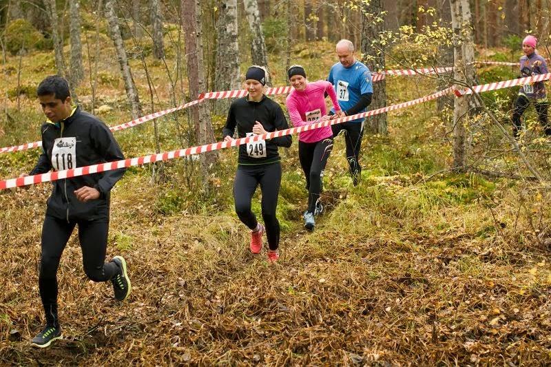 XC-race 2013 - DSC_7306.jpg