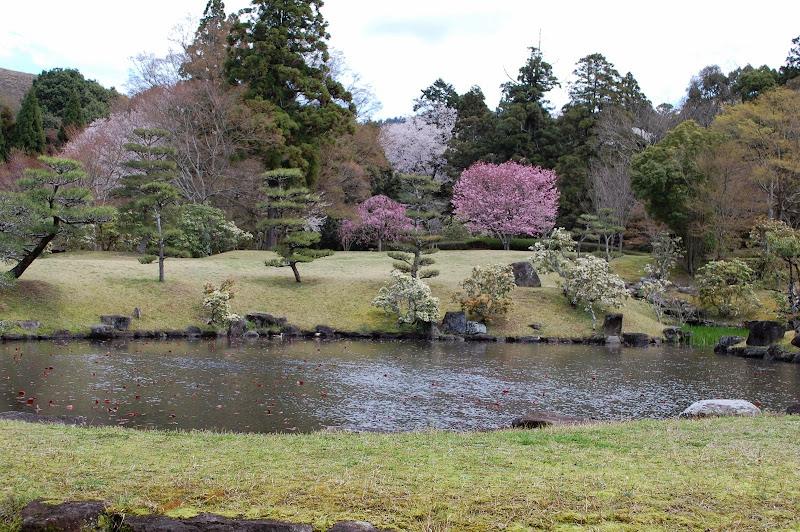 2014 Japan - Dag 8 - jordi-DSC_0630.JPG