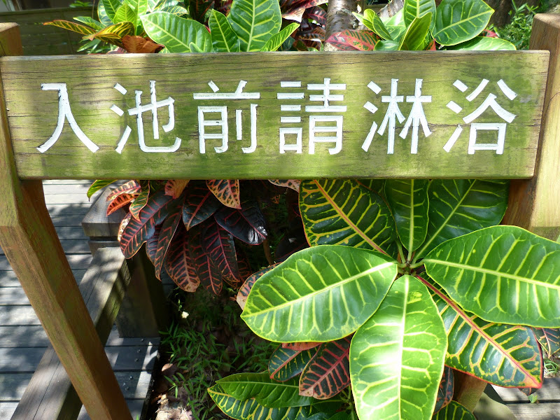 Tainan, sources chaudes de Guanziling .J 5 - P1210010.JPG