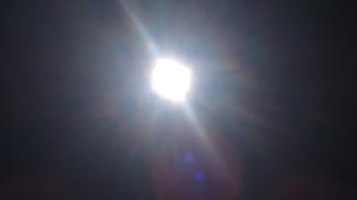 ヴィーガン逗子太陽2DSC_0336.JPG