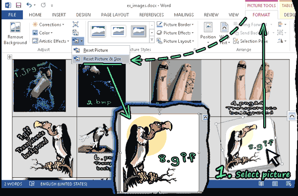 Example extensions images
