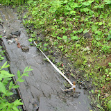 """Дорожки экологической тропы покрыты вонючей жижей, вода поступающая в водный объект из """"прочищенного"""" колодца - черная, маслянистая, с неприятным запахом."""