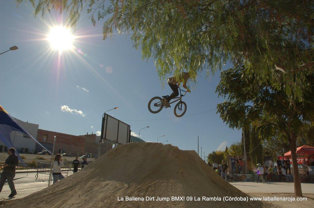 Ballena Dirt Jump BMX 2009 - BMX_09_0064.jpg