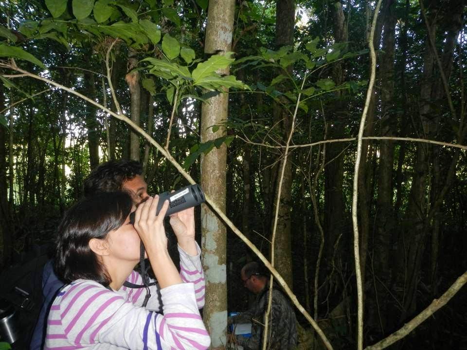 Sobre-aves-y-bosques_observa-escucha-y-cuenta.jpg