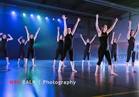 Han Balk Voorster Dansdag 2016-4014-2.jpg