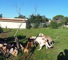 Quinta Life - Sunday Morning Fun in the Sun