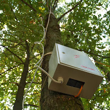 Smotra, Smotra 2006 - P0210417.JPG
