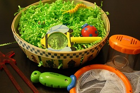 Insect Sensory Basket (Photo by Julie at The Adventures of Bear)