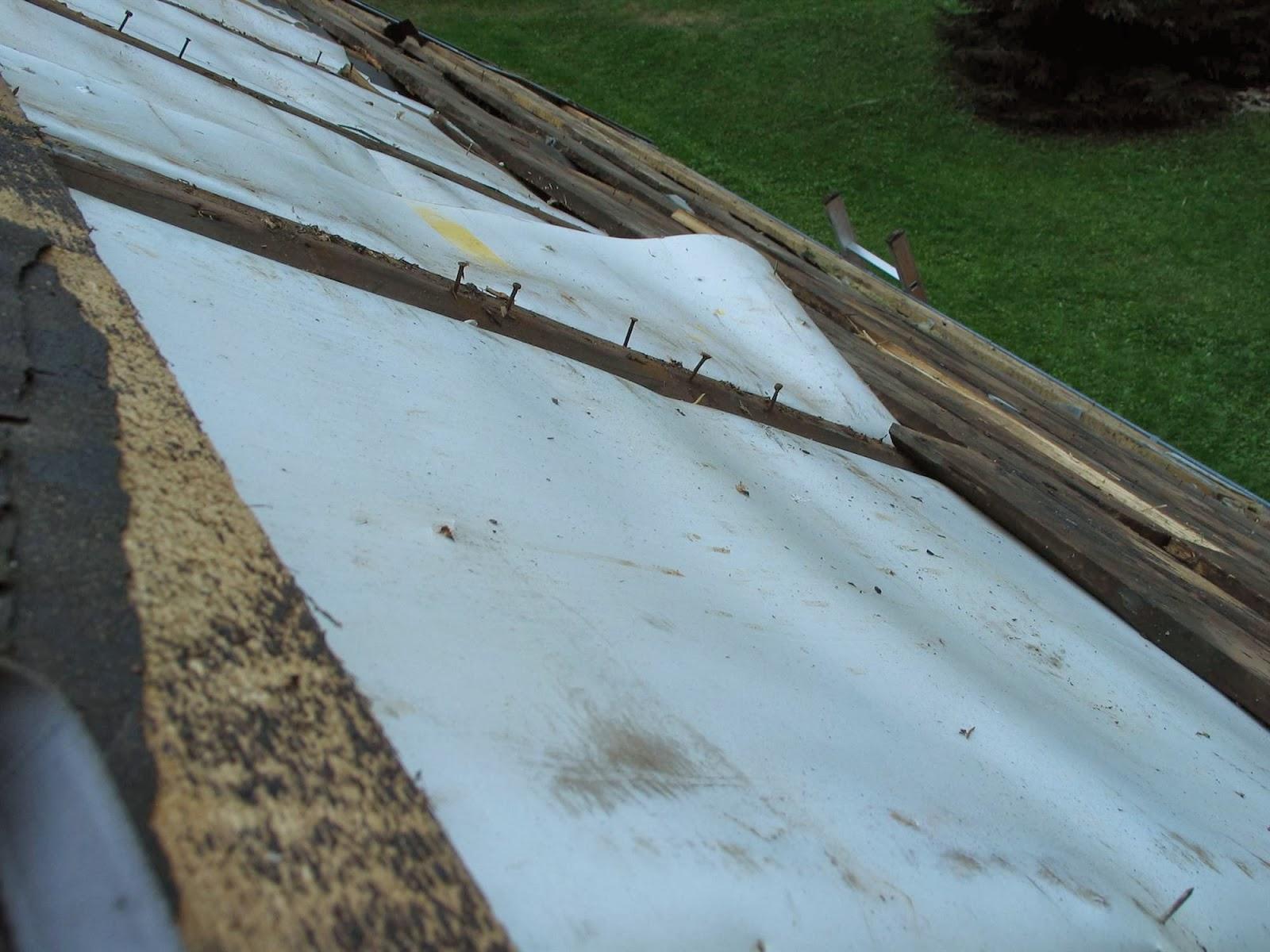 Delovna akcija - Streha, Črni dol 2006 - streha%2B037.jpg