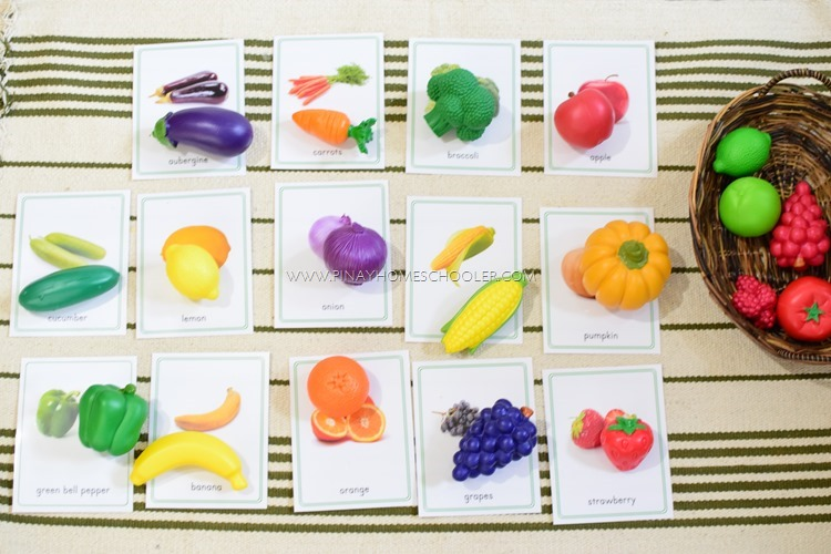 Montessori Fruit Cards