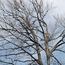 Orientacijski vikend, Črni dol 2007 - P0176104.JPG