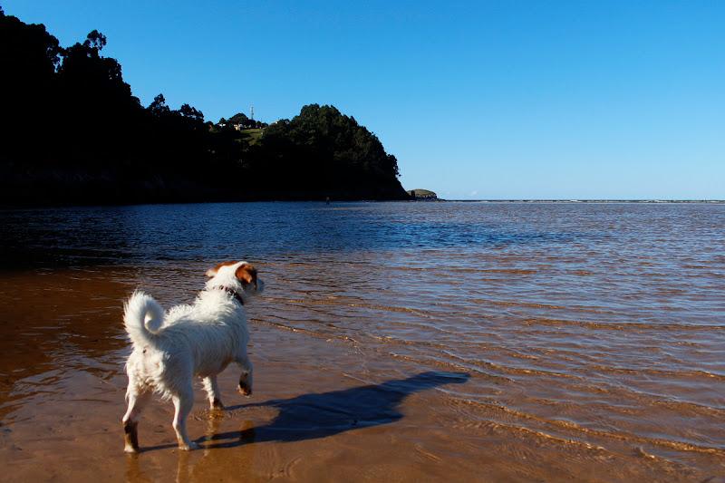 Amy mirando el mar