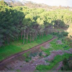 2010 06 13 Flinders University - IMG_1438.jpg