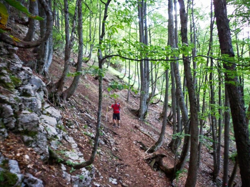 Kamnik–Savinja Alps - Vika-02947.jpg