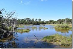 Boardman pond-2