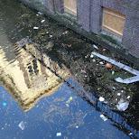 garbage The Hague in the Netherlands in Den Haag, Zuid Holland, Netherlands