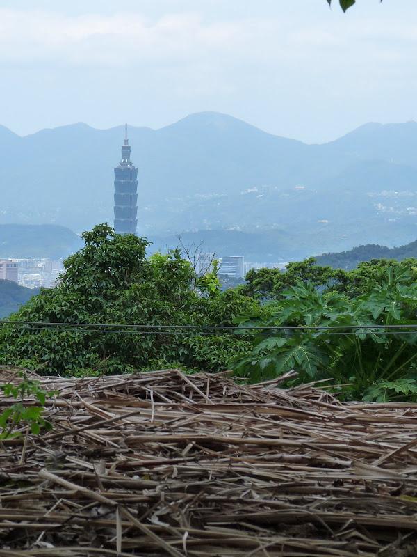 TAIWAN Taipei.MAOKONG GONDOLA - P1280181.JPG
