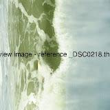 _DSC0218.thumb.jpg