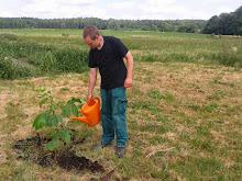 BaumbepflanzungImTherapiegarten_12-06-2016