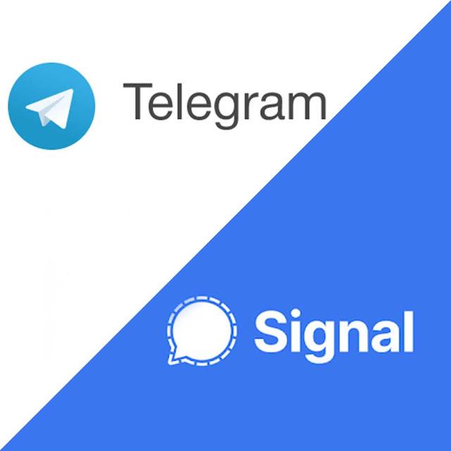 Telegram And Signal