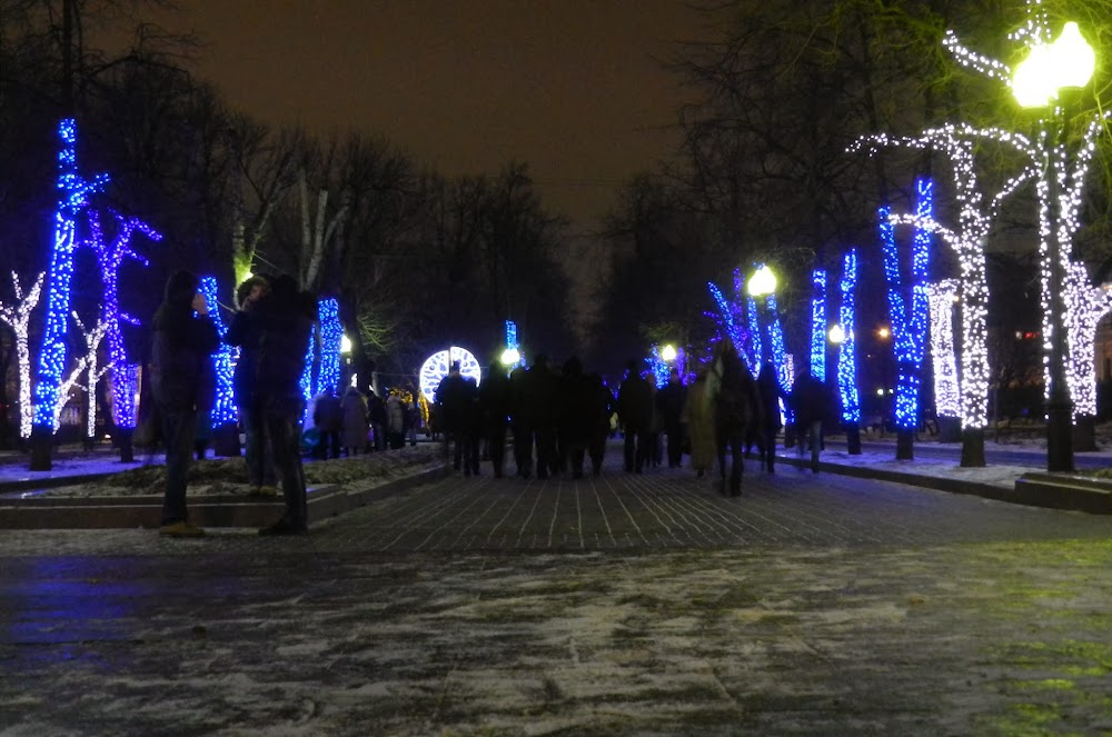 more delightful lit-up trees!