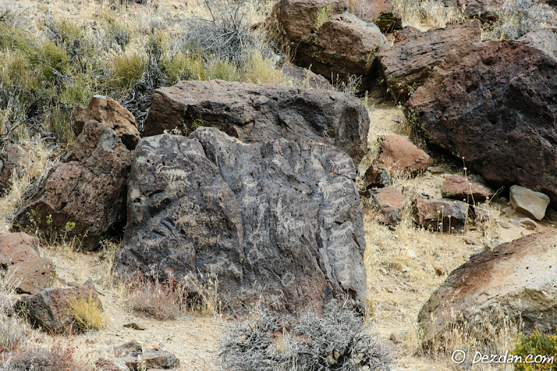 The first petroglyphs we encounter.
