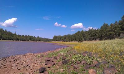 The Black Sand Beaches of Arizona's Upper Lake Mary