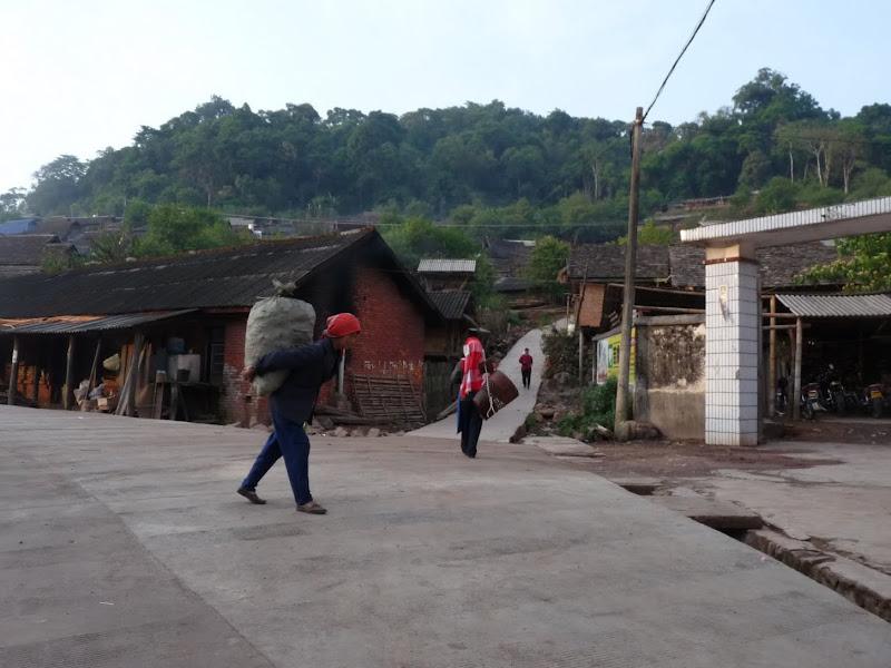 Chine: randonnée xishangbanna, région de Bada - Picture1%2B1107.jpg