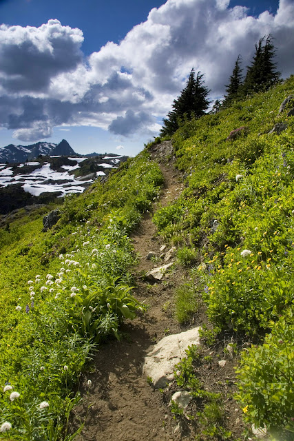 Hiking Trail / Credit: Peter James Photography Studio