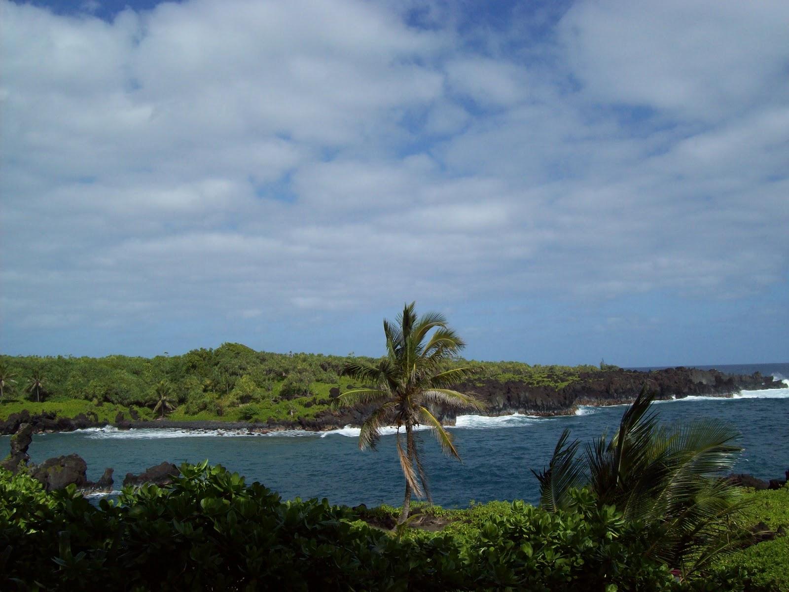 Hawaii Day 5 - 100_7448.JPG