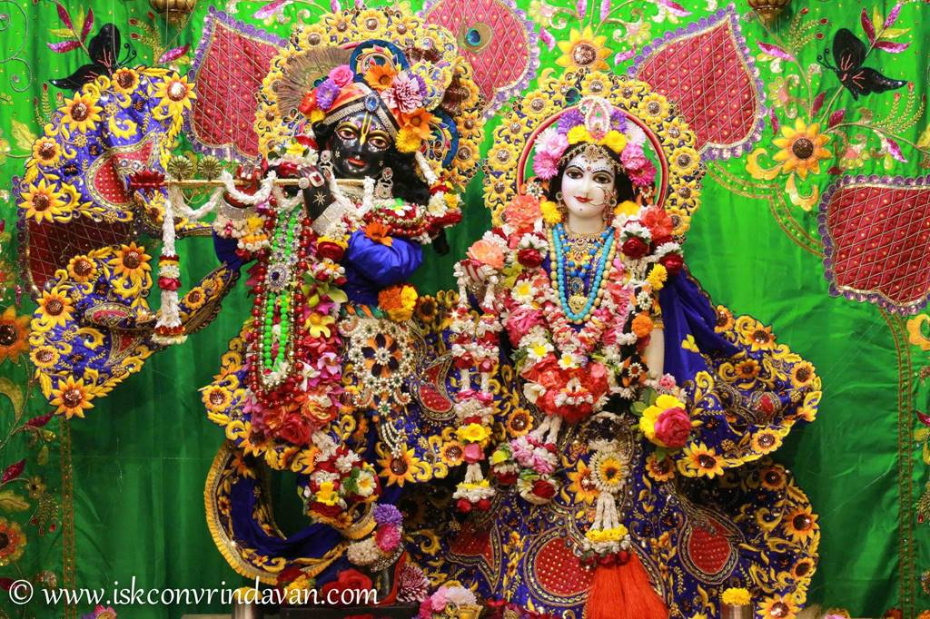 ISKCON Vrindavan Sringar Deity Darshan 01 Mar 2016 (14)