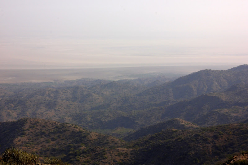 #India #Gujarattourism #Kutch #maverickbird