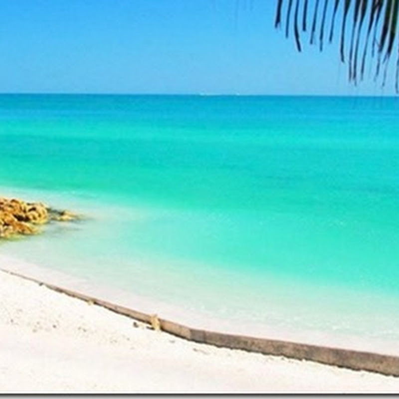List Of Siesta Key Beach Hotels Apartment Rentals Florida
