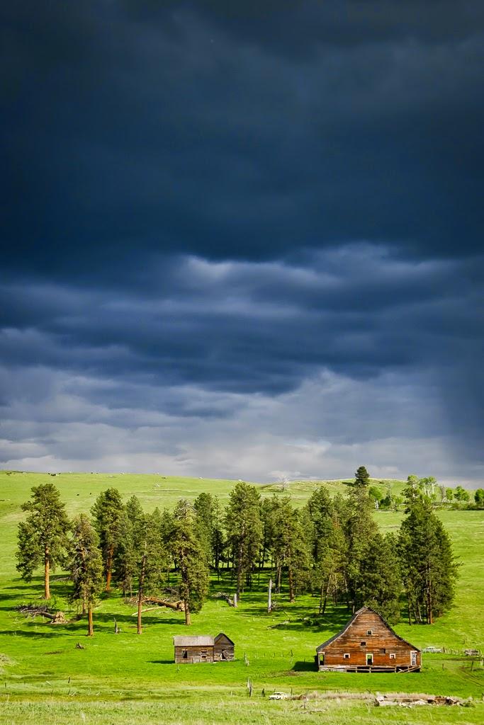 """""""Spring Storm"""" by Valerie Henschel"""