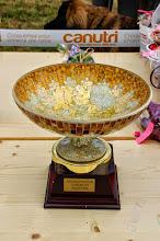 Photo: Trophée du Meilleur Mâle