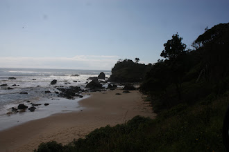Photo: Year 2 Day 231 - The Beach at Port Macquarie #3