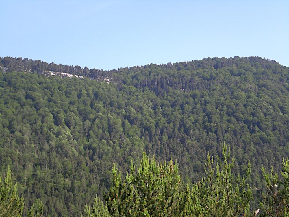 Taga 2006 - CIMG9276.JPG