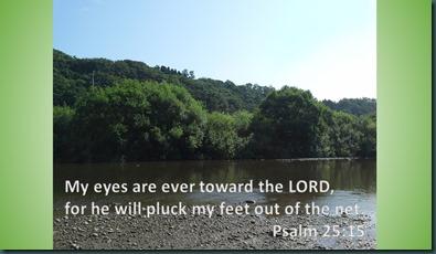 psalm 25 15
