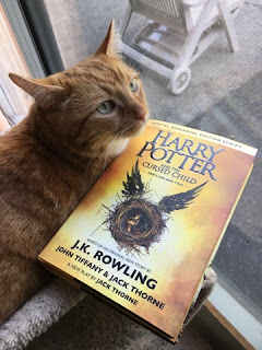 Ripple and Harry Potter and the Cursed Child