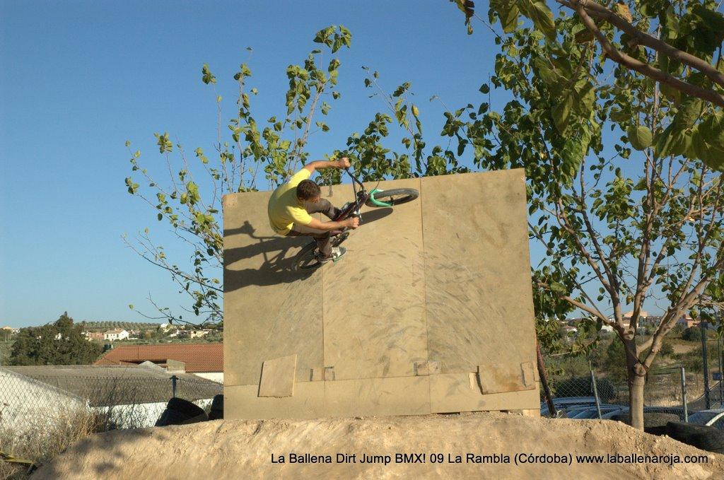 Ballena Dirt Jump BMX 2009 - BMX_09_0103.jpg