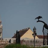 St Matthias and Budapest Crow