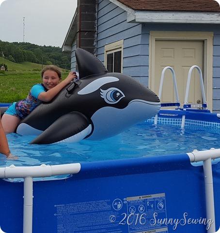 suit whale