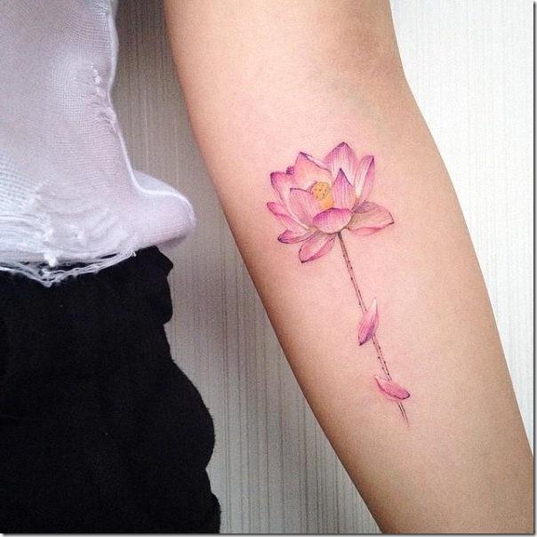 detalles_graciosos_dejan_a_flor_de_lotus_an_ms_radiante