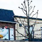 Holandia_JACKS PARADISE (6).jpg
