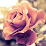 Dania Hasan's profile photo