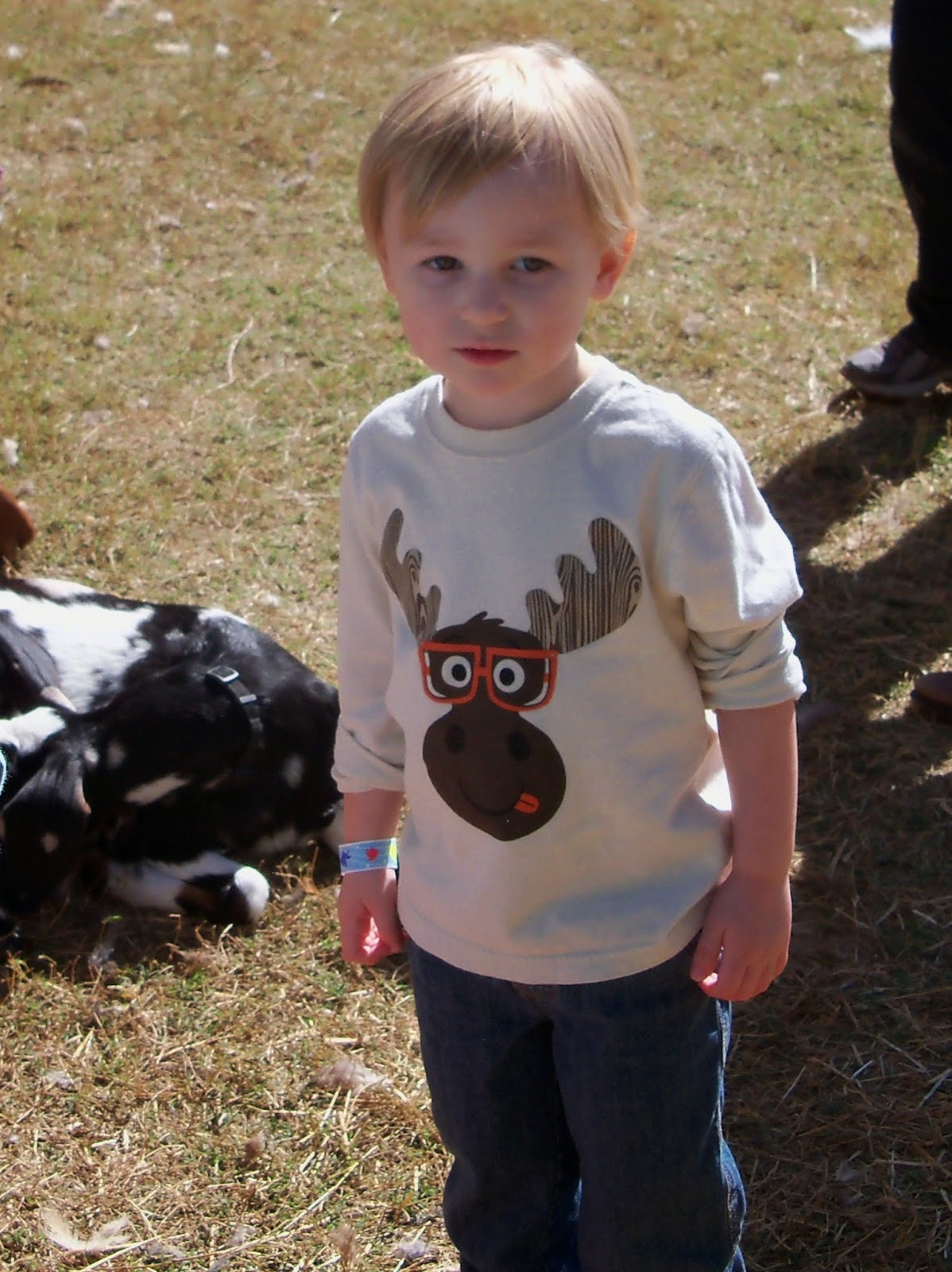 Blessington Farms - 116_5023-001.JPG