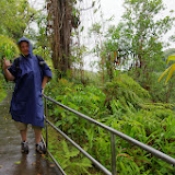 06-23-13 Big Island Waterfalls, Travel to Kauai - IMGP8856.JPG