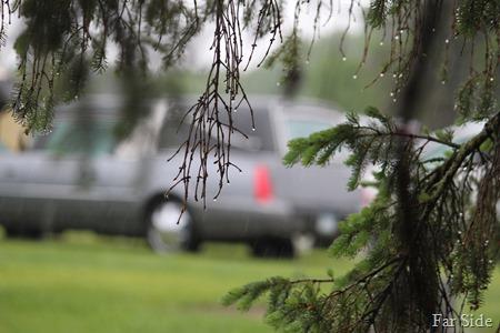 Hearse in the rain