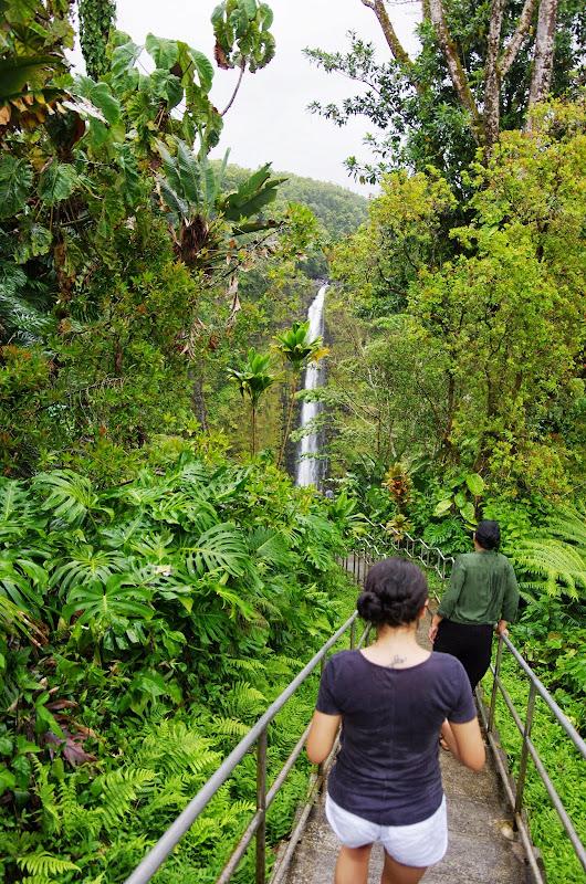 06-23-13 Big Island Waterfalls, Travel to Kauai - IMGP8862.JPG