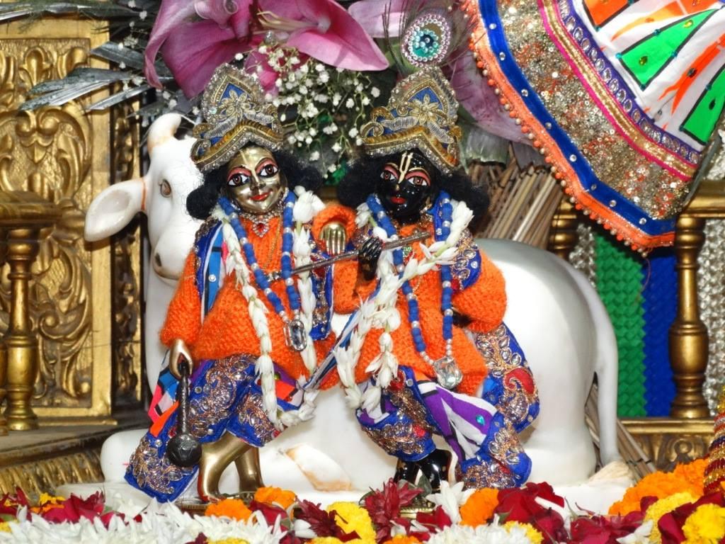 ISKCON Punjabi Bagh Deity Darshan 16 Dec 2015 (13)